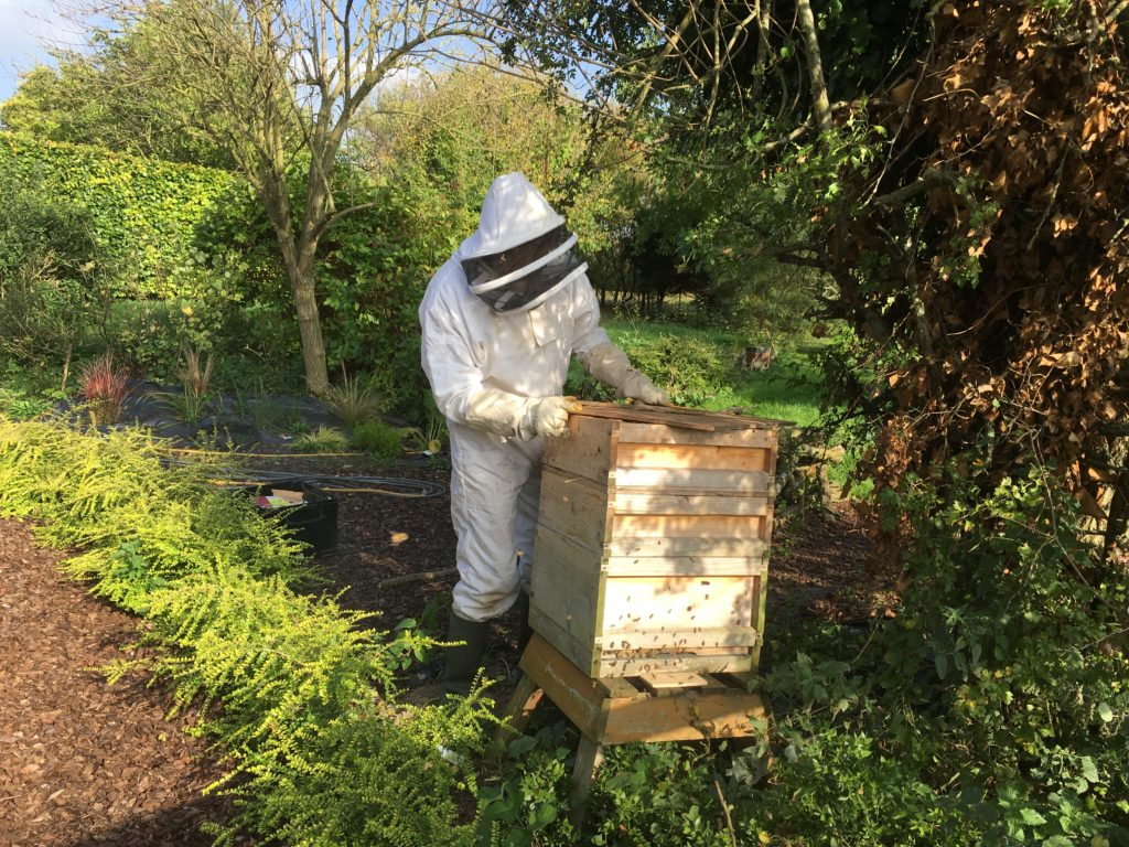 One of our beehives